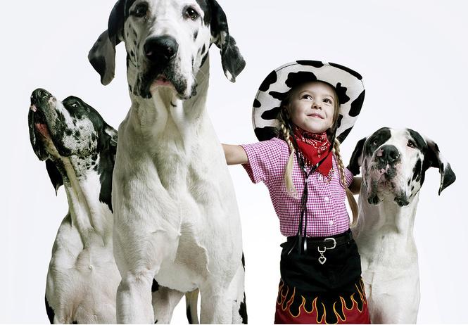 очаровывать детей собак перепутать