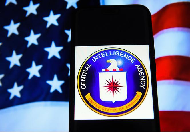 Настойчивая американка несколько раз проникала в штаб-квартиру ЦРУ, чтобы поговорить с неким агентом Пенисом