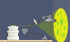 Как сделать дома лазерный микроскоп-проектор