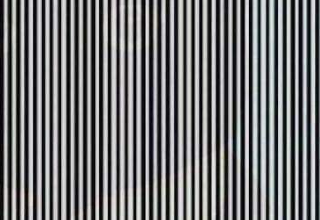 Оптическая иллюзия: потряси головой, чтобы увидеть фото, спрятанное в полосках
