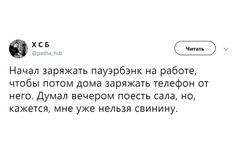 шутки вторника гугл мопс