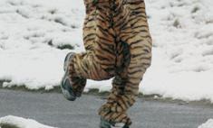 Как правильно устраивать пробежки зимой