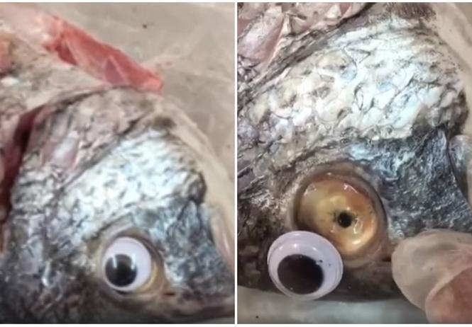 магазин выдавал лежалую рыбу свежую приклеивая пластиковые глаза