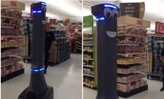 познакомься самый бесполезный бессмысленный робот видео