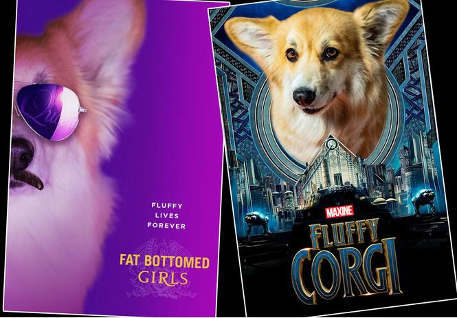 Дизайнеры вписали в афиши прошлогодних фильмов собак корги