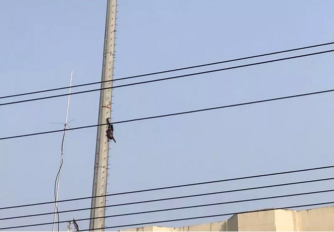 китае пьяный мужчина стать человеком-пауком завис огромной высоте