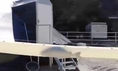 видео скоростного тоннеля рыбы вирусным