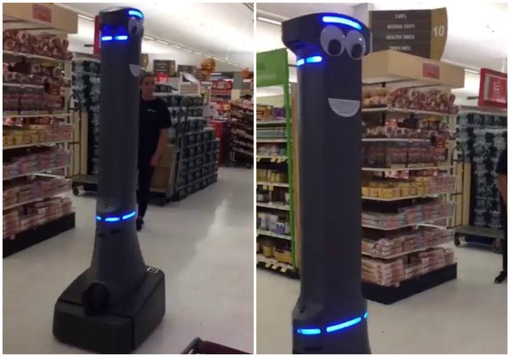 Фото №1 - Познакомься: самый бесполезный и бессмысленный робот в истории (видео)