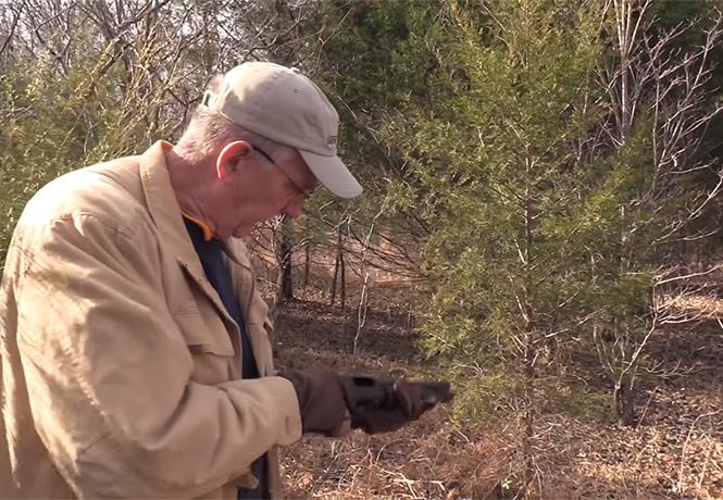 Видео, которое невозможно развидеть: как рубить новогоднюю елочку ружьем!