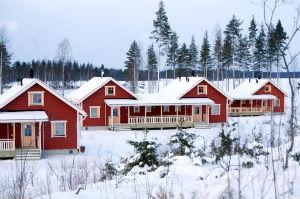 Фото №1 - Финские радости