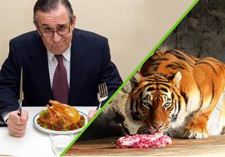 Госдума против цирка: где дешевле кормят?