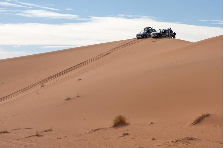 Фото №21 - Renault Duster: до Сахары подбросишь?
