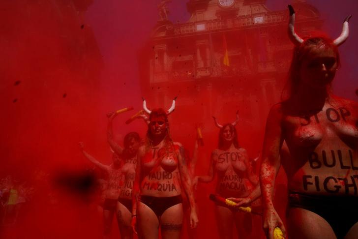 Фото №3 - Испанские активистки разделись в защиту быков