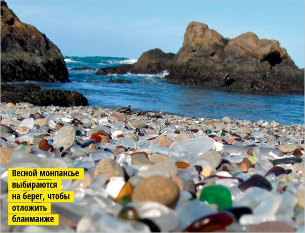 Фото №8 - 10 самых поразительных пляжей на Земле