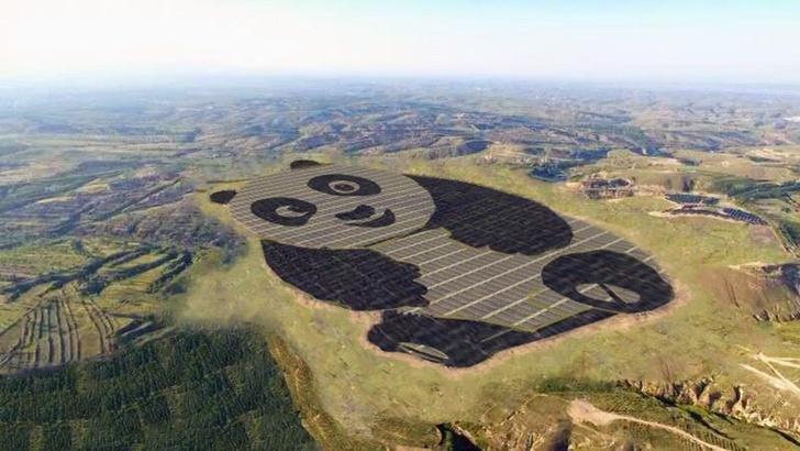 Фото №1 - Панда, которую видно из космоса, оказалась солнечной электростанцией