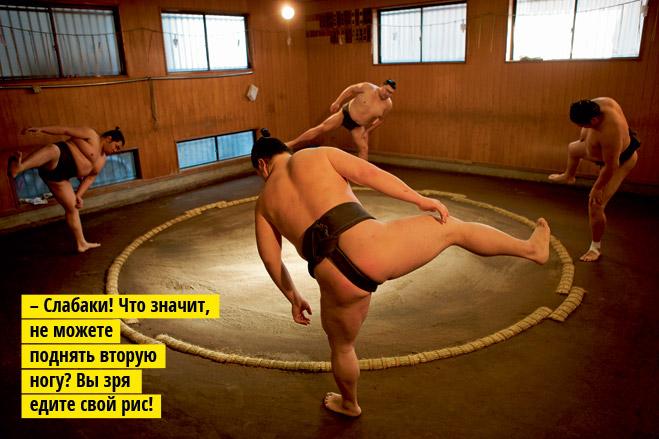 Фото №4 - Сумо: весомая статья о японской борьбе