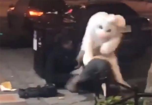 Фото №1 - Во Флориде прохожего избил человек в костюме пасхального кролика (видео)