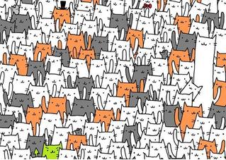 Головоломка: найди кролика в гуще котов