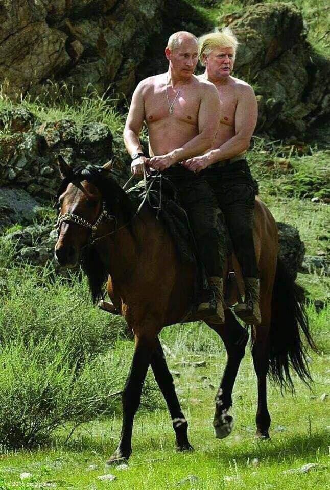 Фото №5 - Лучшие шутки об избрании Дональда Трампа президентом США