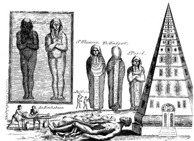 Фото №7 - Слабоумие и отвары: чем лечились от всяких холер наши предки до изобретения анальгина иалка-зельтцера