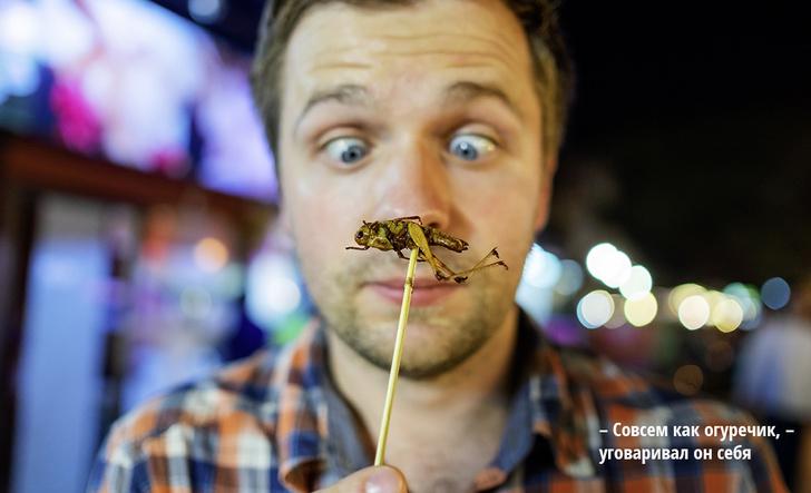 Фото №1 - Бабочки — в животе: ученые экспериментируют с диетой на основе насекомых