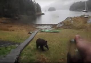 Самая эмоциональная встреча с медведем за всю историю YouTube
