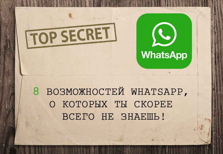 Фото №1 - 8 неожиданных возможностей WhatsАpp, о которых ты скорее всего не знаешь
