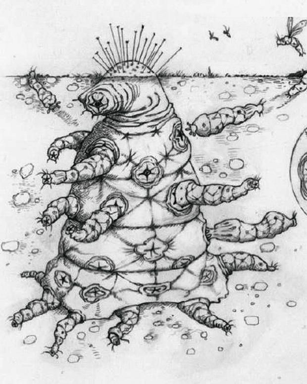 Фото №7 - Эти забавные рептилоиды: как будут выглядеть пришельцы, по мнению ученых