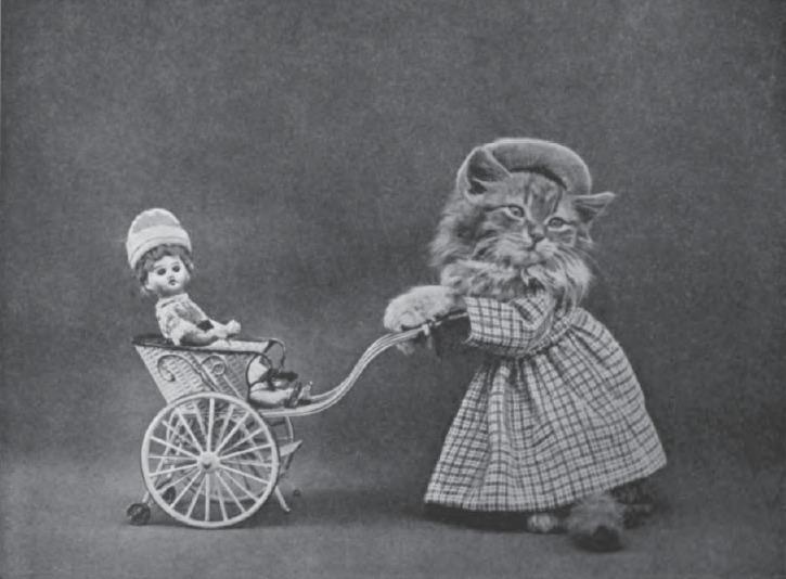 Рози Царапкина выгуливает Дженни