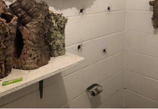 Ванная комната, в которой тебе захочется кричать от ужаса! (ФОТО)