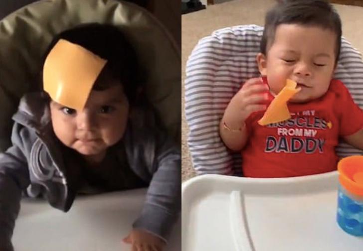 Фото №1 - «Брось сыр на лицо ребенку» — новый дурацкий флешмоб в Twitter (видео)
