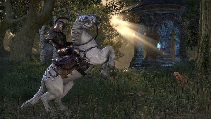 Фото №6 - 5 причин потратить все деньги на онлайн-игру The Elder Scrolls Online