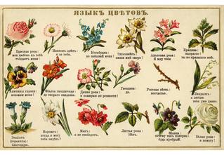 Зловещий шепот цветов