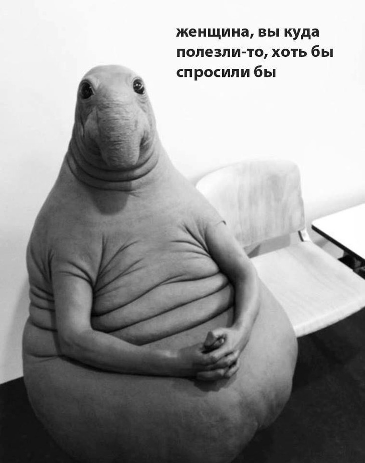 Фото №5 - Все лучшие фотожабы со Ждуном в одной подборке!