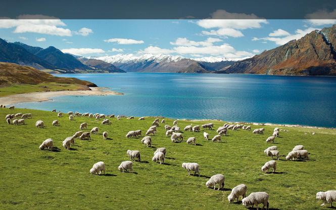 Новая Зеландия Image: Новая Зеландия решила выслать русских шпионов, но не нашла их