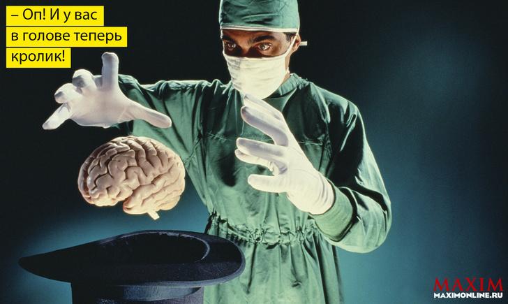 Фото №1 - Как в будущем можно будет заменить свой мозг без вреда для жизни