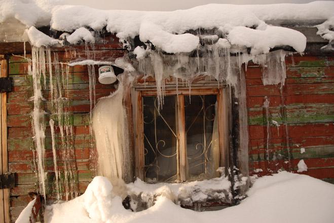 Фото №3 - Сибирская резня бензопилой