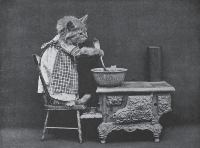 Миссис Царапкина подменяет Пустолайку