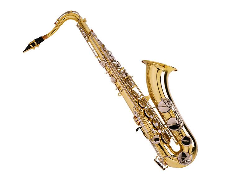 Фото №7 - 7 самых простых в освоении музыкальных инструментов