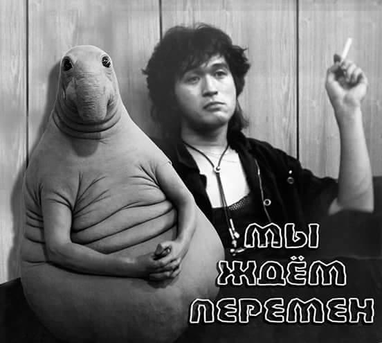 Фото №6 - Новые фотожабы со Ждуном!