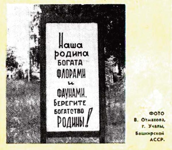 Фото №4 - Идиотизмы из прошлого: 1977 год (выпуск № 8)
