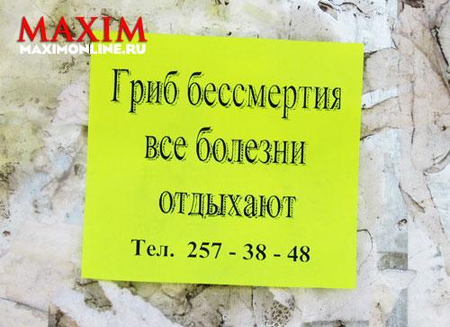 Фото №5 - Сентябрьское обострение
