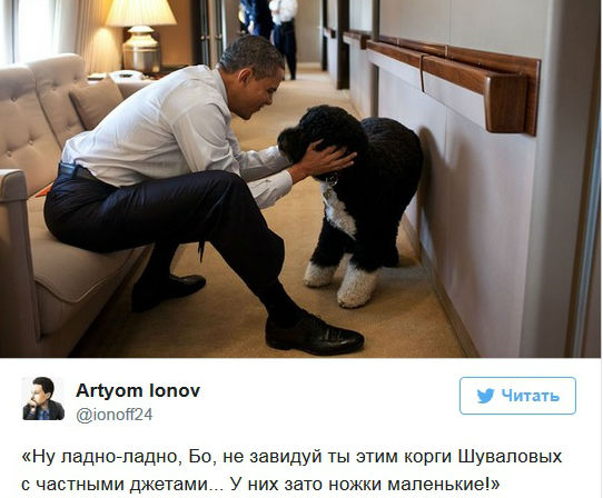 Фото №2 - Лучшие шутки про собак жены Шувалова, кровожадный тест по «Игре престолов» и другие самые интересные статьи этой недели