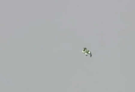 Мужик успешно прыгнул без парашюта с высоты семи с половиной километров (видео)