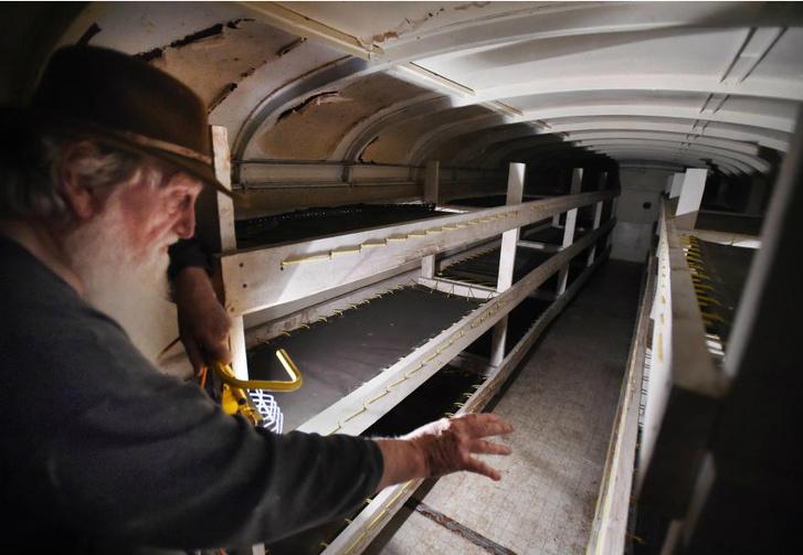 Фото №1 - Канадец 50 лет строил бункер из 42 школьных автобусов!