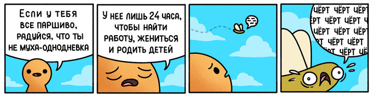 Фото №2 - 13 лучших анекдотов сентября