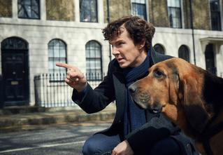 10 фактов о «Шерлоке», которые должен знать каждый поклонник сериала