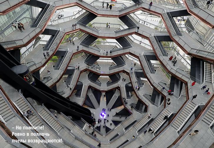 Фото №1 - Куда не ступала нога лифта: «Сосуд» — нью-йоркская новостройка для прогулок по лестницам