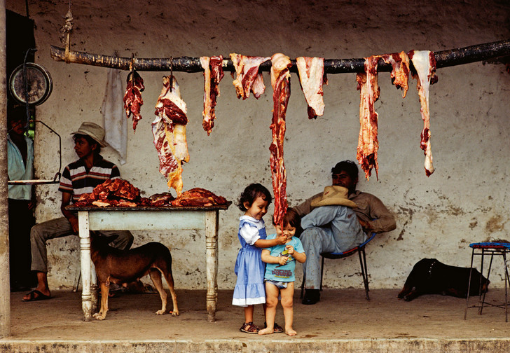 Фото №1 - 3 способа сохранить мясо без холодильника