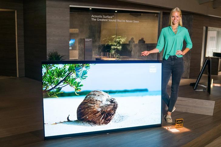 Фото №1 - Sony показала свой самый большой BRAVIA OLED